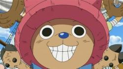 One Piece: Episodio de Chopper: Flor en invierno, el milagro del cerezo Special